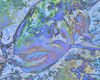 Watercolor Rainbow - Fine Giclee Print
