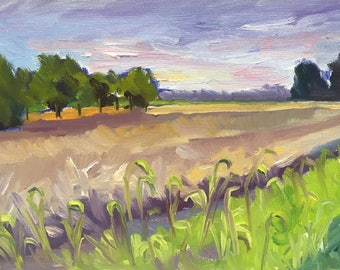 The West Field Small Plein Air Landscape Oil Painting on Canvas