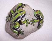 Frog sculpture / frog rock / frog paper weight / valentine gift for frog lover / romantic frogs / Hypsiboas semiguttatus / unique frogs