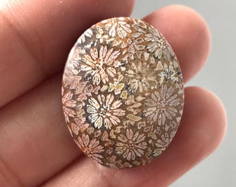 Beautiful Natural Fossil Floral Stone 20 x 25 mm