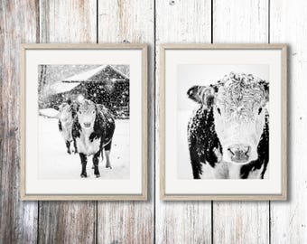 Black and White Cow Art, Cow Print, Rustic Modern Decor, Black and White Cow Photo, French Country Decor, Farmhouse Decor, Large Wall Art