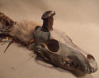 Vintage Native American style antler pipe Coyote Skull
