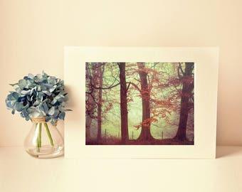 peak district photograph, photo print, landscape, whimsical fine art photography, tree photo, british landscapes, misty trees, art print