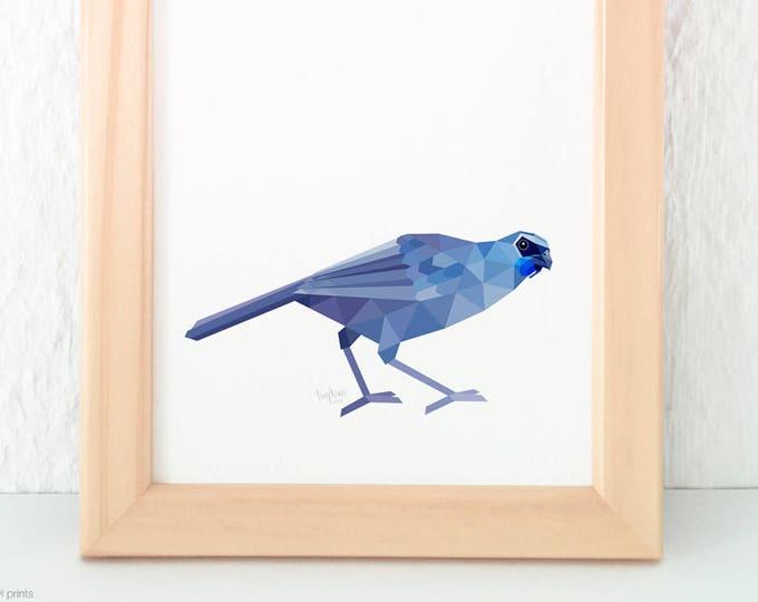 New Zealand Kokako print, Kiwi artist, Kiwiana animals, Rare New Zealand birds, Native New Zealand birds, Kiwi art, Kiwi home decor