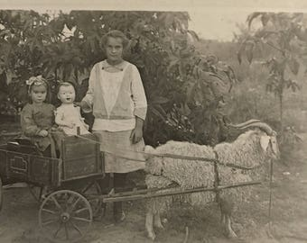 Maxine and Lucy and Big Doll Goat Cart Real Photo Postcard Vintage RPPC Oklahoma