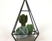 Crochet Cactus in Glass Terrarium - Geometric Terrarium - Fake Cactus - No Maintenance Cactus - Amigurumi Plant