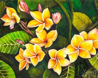 Hawaiian Plumeria Print, Floral Watercolor Painting, Hawaiian Art, Tropical Decor, Flower Painting, Giclee Print, Plumeria Artwork