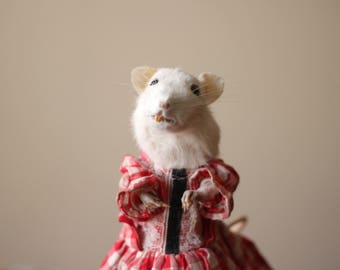 Real Anthropomorphic Rat Taxidermy with Gingham Dress and Glass Dome