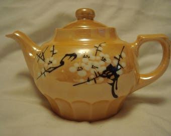 Elegant  Hand Painted 2 cup tea pot