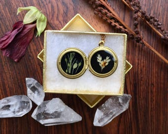 tiny brass locket with pressed plants // botanic necklace // plant lovers pendant