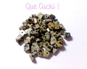 Out of Stock 125 stone Dalmatian Jasper chips.