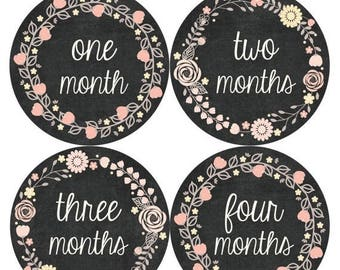 Monthly Baby Stickers Baby Month Stickers Baby Girl Month Stickers Monthly Photo Stickers Monthly Milestone Stickers 356