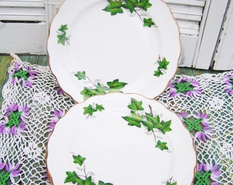 Vintage Royal Kent Green Ivy Dessert Plate Ivy Leaves English Bone China Dessert Plate Tea Party