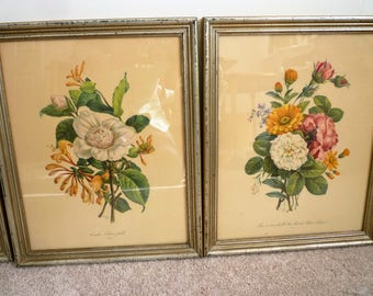 Botonicals Floral - Lithograph, Print Frame ~No. 9- Camelia, Chvre-feuille ~No 11- Rose a cent feuilles, Rose blanche, Loucis, Aster.