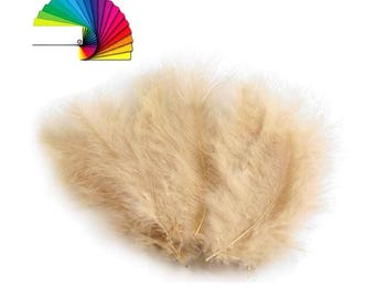Ostrich feathers 12 to 17 cm many colors