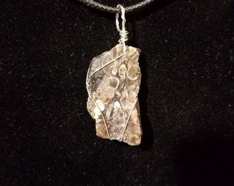 Sterling Silver Turritella Fossil Shell Agate Pendant
