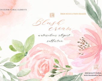 Blush cream watercolour flowers clipart, hand drawn: Elements, textures, patterns, washes. Soft  blush pink and peach colors. Peonies.