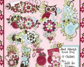 On Sale 50% Owl Always Love You Digital Scrapbook Kit Clusters - Digital Scrapbooking