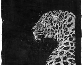 Black & white Tiger nature patinings scratchboard