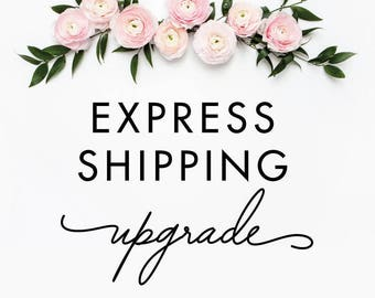 Reserved for Hilary R ONLY -Express shipping upgrade