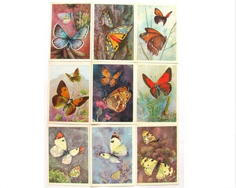 Butterflies, Set of 16 Soviet Unused Postcards, Kinds of Butterflies, Insects, Russian, Illustration, Aristov, USSR, 1974