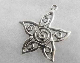 Lot 5 flowers in silver metal star pendant