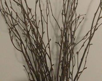 "Birch Tree Branch Twigs (12""-18"") - Bulk birch branches/wholesale birch branches/birch branches/branch centerpiece/rustic wedding"