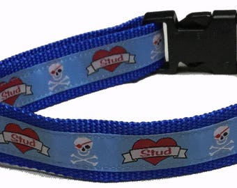 Dog Collar, Stud