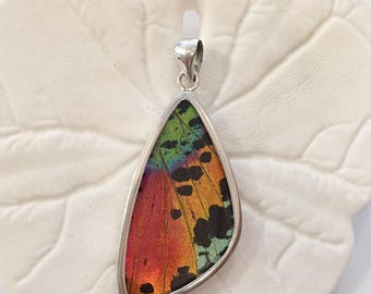 SUNSET MOTH Butterfly Wing Pendant// Butterfly Wing Jewelry// AUTHENTIC Butterfly Wings// Eco Friendly Jewelry// Statement Jewelry