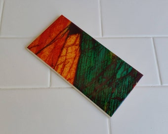 Bathroom Feature Tiles,  Mineral Thin Section Photos, Art and Science - Australian Minerals