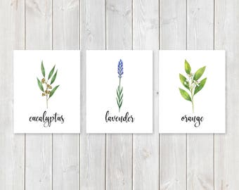"Set of 3 Essential Oil Herbs Print Set    8""x10"" DIGITAL DOWNLOAD    Essential Oil Gift    Essential Oil Business Printable Wall Art Set"