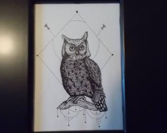 Framed Owl Original Ink Drawing