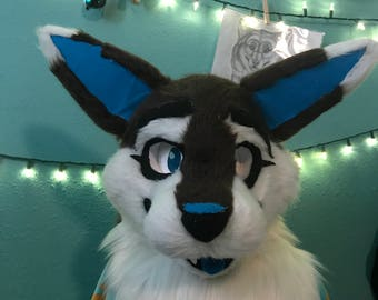 Coyote Fursuit (head and paws)
