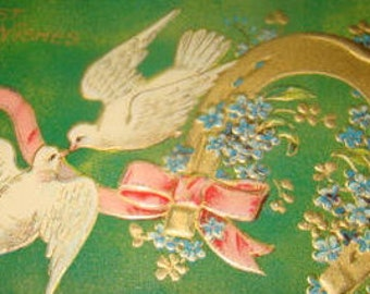 Pretty Vintage Dove Postcard