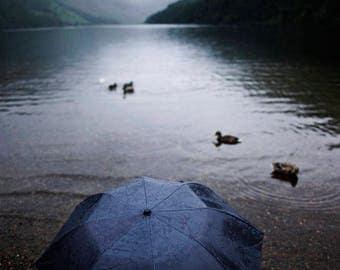 Umbrella at the Lake | Ireland | Fine Art Print