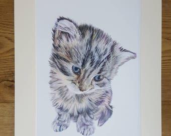 Cute Kitten Print, Kitten Illustration, Coloured Pencil Kitten Print, Pet Portrait, Kitten Artwork, Kitten Realism, Kitten Nursery Wall Art