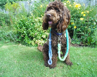 Blue/Teal Rope Dog Lead / Rope Dog Leash / 4ft Rope Dog Lead / 12mm / Rope Lead / Rope Leash / Pet Supplies / Two Dogs & Co