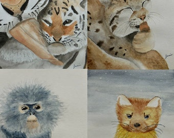 "Assorted Watercolor Notecard Set of 20 - 5.5""x4"""