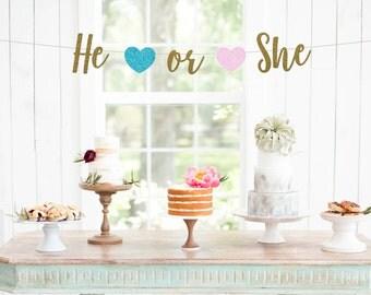 He or She Banner, Baby Shower Banner, Gender Reveal Banner, Baby Photo Prop, Gender Reveal Sign, New Baby, Baby Sprinkle, Boy or Girl