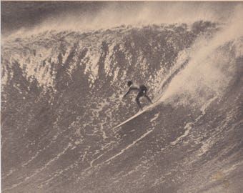 THE SURFER QUARTERLY