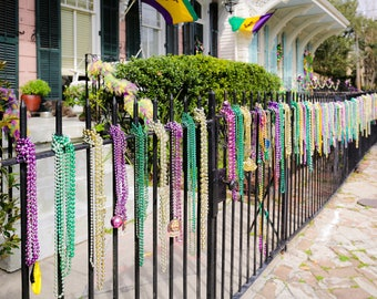 Mardi Gras New Orleans Garden District Beads Greeting Cards