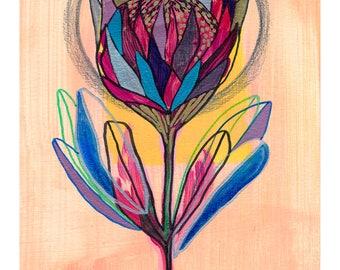 Fine Art Protea Print