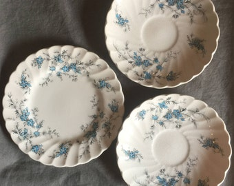 Forget Me Not China by Staffordshire