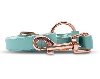 Dog and Cat Leash in Mint in Rose Gold Hardware