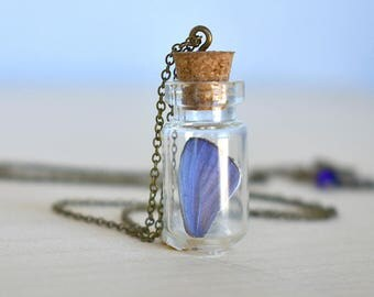 Butterfly Wing Bottle Terrarium   White & Purple Wing Necklace   Cute Butterfly Necklace   Blue Butterfly Necklace