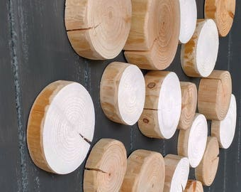 SCATTER TILES - Make Your Own Wall Art - Log Wall - Art - Decoration - Wall Decor - Home Decor - Wood Slices - Wood Slice Art - Natural Wood