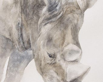 Rhino painting of Rhino print rhino nursery art print of rhinoceros animal peek a boo print kids SEE PHOTOS to view all 15 PRINTS 11x14 New