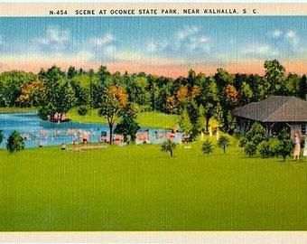 Vintage South Carolina Postcard - By the Lake at Oconee State Park (Unused)