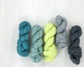 MINI SKEIN sock yarn set, FAVE sock: Daphne