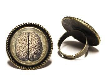 Anatomical Brain Brass Rope Ring 20mm